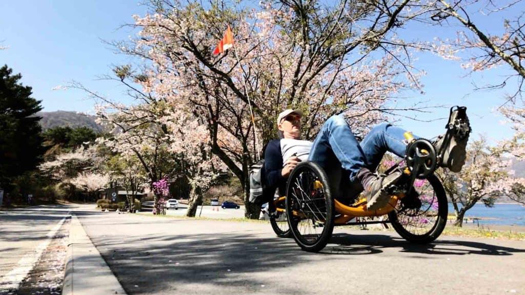 riding recumbent trike past sakura